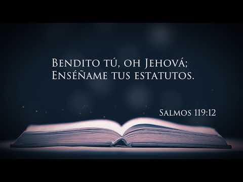 Estatuto Perpetuo | Pastor Andres Noguera