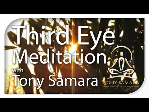 15 minute third eye meditation with Tony Samara