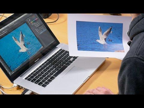 Fotodrucker kalibrieren – Blende 8 – Folge 152