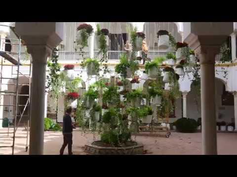 Festival Flora 2017: Córdoba, capital mundial del arte floral