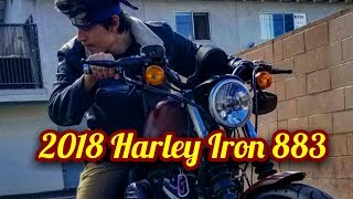 10. My 2018 Harley Davidson Iron 883