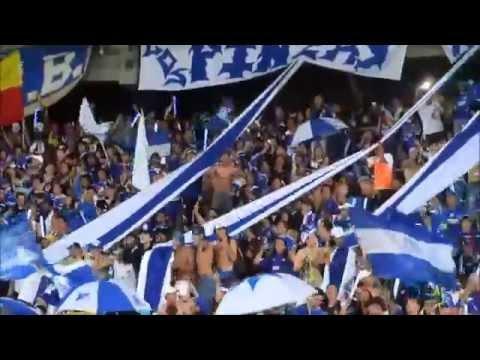 Comandos Azules Y Blue Rain Las Barras Mas Grandes De Colombia - Comandos Azules - Millonarios