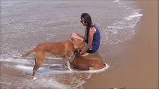 Gokarna India  city pictures gallery : Chilling India Series- Gokarna 2015 Part 1