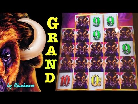 BUFFALO GRAND slot BIGGEST JACKPOT HANDPAY Buffalo Line Hit on YouTube