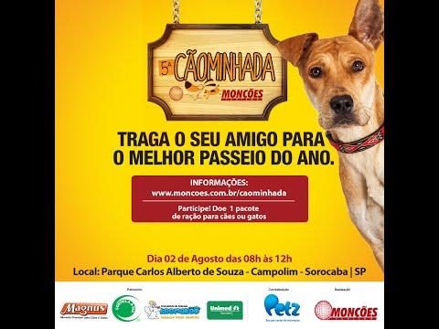5ª Cãominhada Sorocaba (Organizada pela Monções Turismo) Nós do AmorPraCachorro Participamos