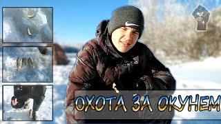 Зимняя рыбалка (Охота за окунем) - [Первый мужской 2015]