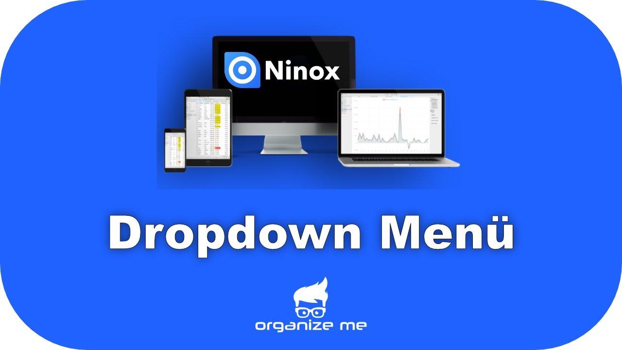 Ninox-Partner
