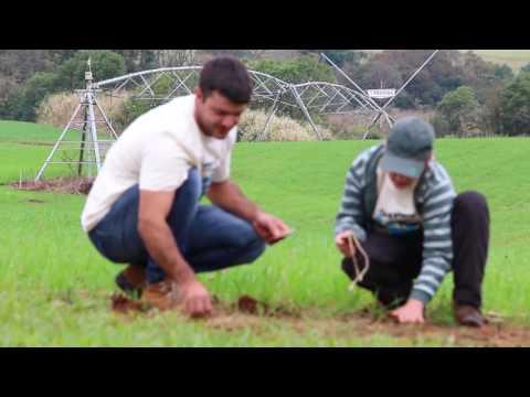 Eco Irrigação