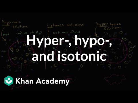 Hypotonic, isotonic, and hypertonic solutions (tonicity) (video ...