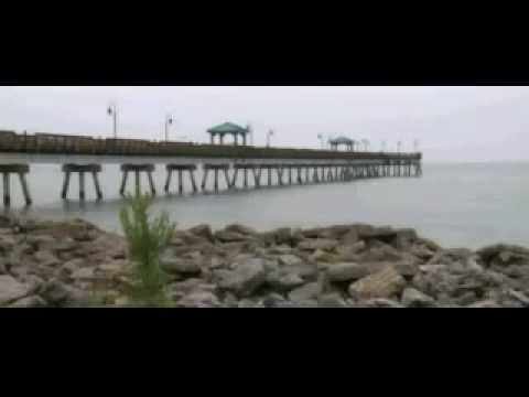 Hundreds of Thousands of DEAD FISH on NEW JERSEY SHORE  AUG 12 2010 - BP Gulf Oil Spill ?