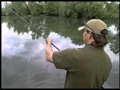 ловля карпа на бойлы подводное видео
