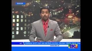 Dhibdee Motumaa Ethio-Ert Giduutti dhalate ilalchisee,ibsaa ejenoo motumaa Ettophiya erraa kename.
