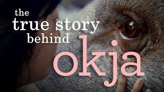 Nonton Okja | Understanding the (Im)Morality of Animal Consumption Film Subtitle Indonesia Streaming Movie Download