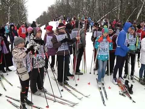 Лыжня Обнинска - 2013 / 11.02.2013