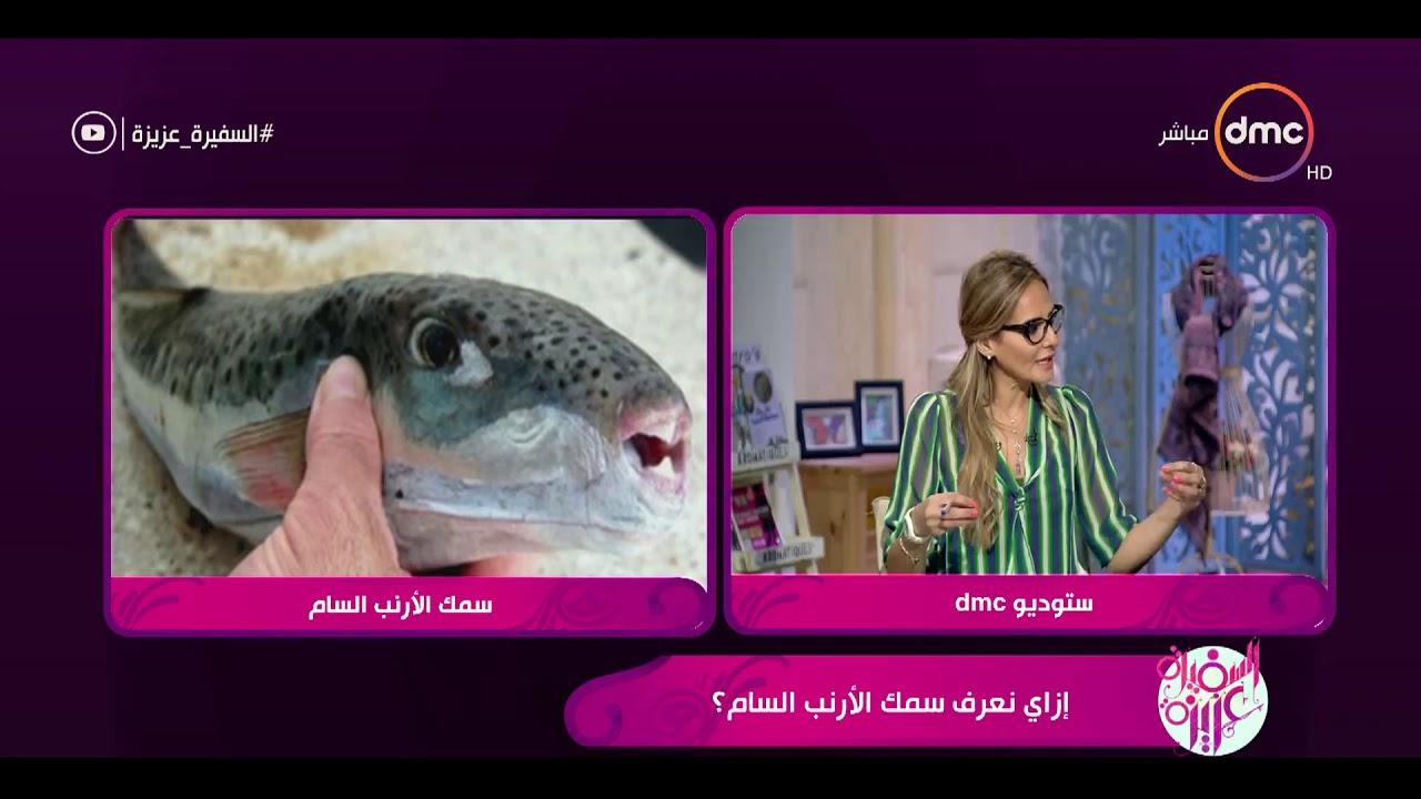 السفيرة عزيزة - ماهي الأعراض الأولية لتناول سمك الأرنب السام ؟