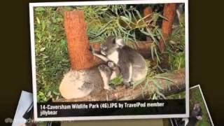 Caversham Australia  City new picture : Caversham Wildlife Park - Perth, Western Australia, Australia