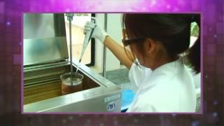 ผลิตภัณฑ์เสริมอาหารเพื่อผู้สูงอายุจากโปรตีนไฮโดรไลเสทของปลานิล