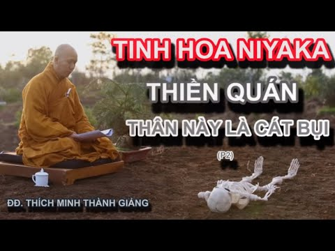 Tinh Hoa NIKAYA - Thiền Quán - Thân Này Là Cát Bụi