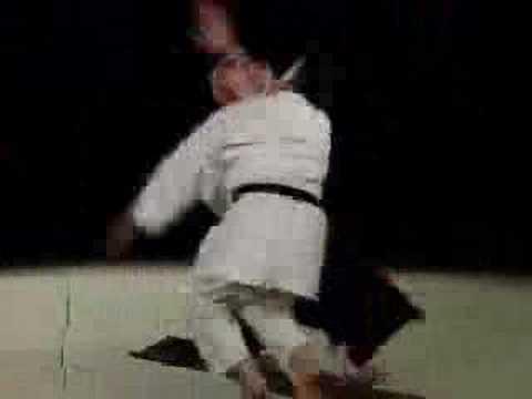 Excelente demostración de Aikido