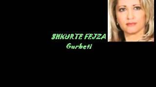 Shkurte Fejza - Gurbeti.avi