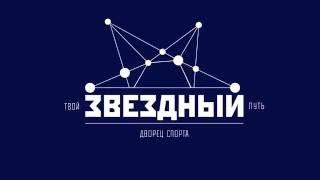 "ДС \""Звёздный\"""
