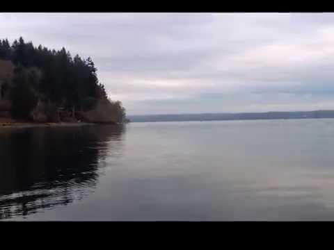 屁孩遊湖看風景...竟被殺人鯨追到嚇尿.....