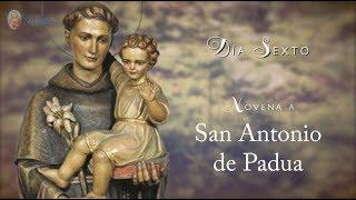 DÍA 6 - NOVENA SAN ANTONIO DE PADUA