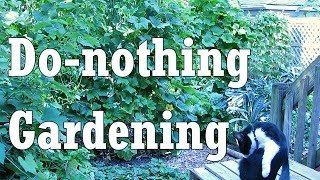 Toward a Do-nothing Gardening, pt. 1: Soil Fertility (Lazy Gardening)
