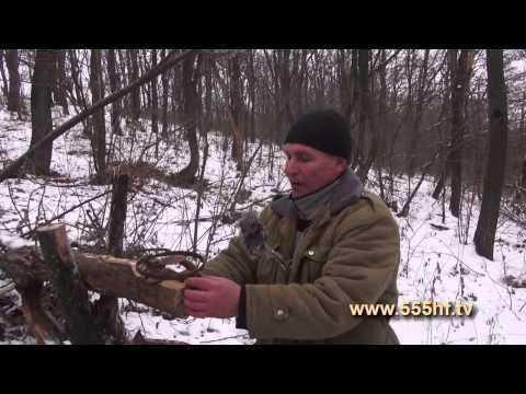 ловля куниц и петлями видео
