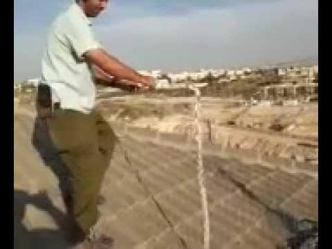 הרחקת יונים באמצעות רשת