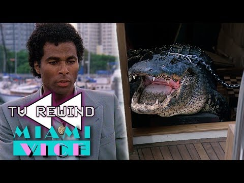 Rencontre entre Tubbs et Elvis (TV Rewind)