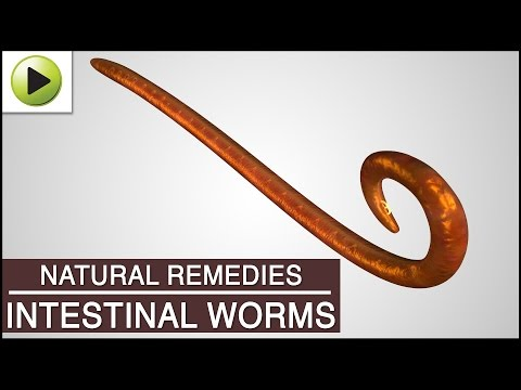 how to get rid tapeworms