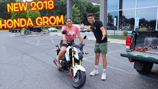 2. OUR NEW 2018 HONDA GROM !
