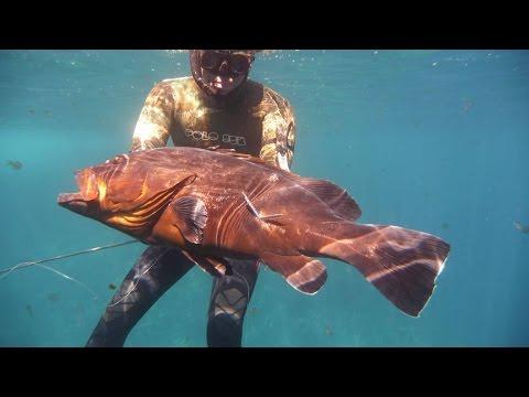Pesca Submarina - Mero 14.5 Kg al acecho del 17-05-2014