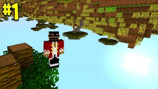 Beating Minecraft But It's Upside Down (#1)