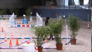 Video Championnat régional d'equifun Saint-Lô 1er mai 2015 MP3, 3GP, MP4, WEBM, AVI, FLV Mei 2017