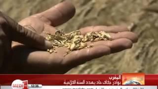 بوادر جفاف حاد يهدد السنة الفلاحية بالمغرب