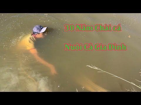 Ông Lão Suốt  30 Năm Chài Cá Trên Sông Nuôi Gia Đình | Miền Tây Sông Nước - Thời lượng: 16 phút.