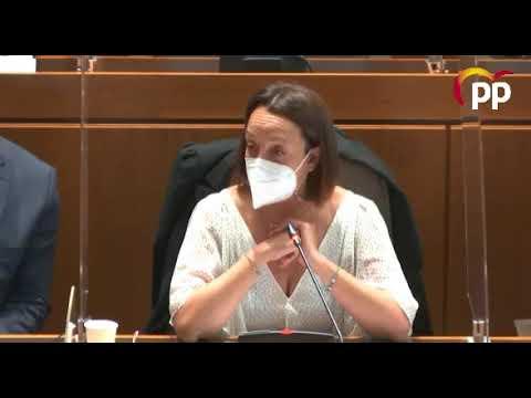 Susín advierte de una subida generalizada de impuestos que PSOE, Podemos y CHA comparten
