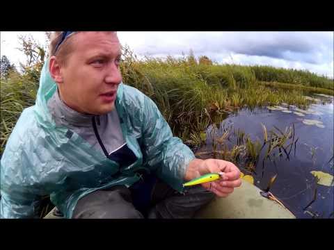 рыболовный запрет в калининградской области