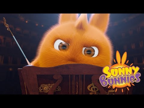 Funny images - Sunny Bunnies - PLAY A CONCERT  Cartoons For Children  Funny Cartoons For Children