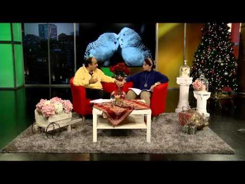 برنامه ازدواج (ویژه برنامه کریسمس)