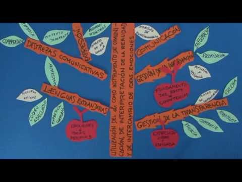 Vídeo Competencia lingüístico comunicativa
