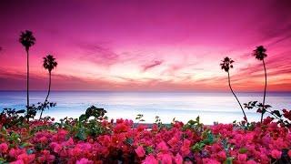 Canary Islands. Beautiful nature of our planet. The most beautiful places of our planet. Very beautiful video. فيديو جميل جدا Nagyon szép videó Video rất đẹp ...