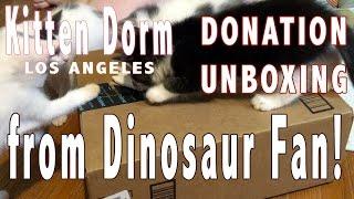 Unboxing of Dinosaur Fan's Donation