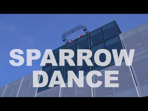 Sparrow Dance at BLOX - Copenhagen