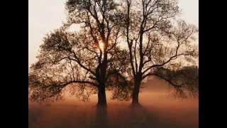 Download Lagu J. F. HUMMEL / L. C. DAQUIN (3 clarinets) Mp3