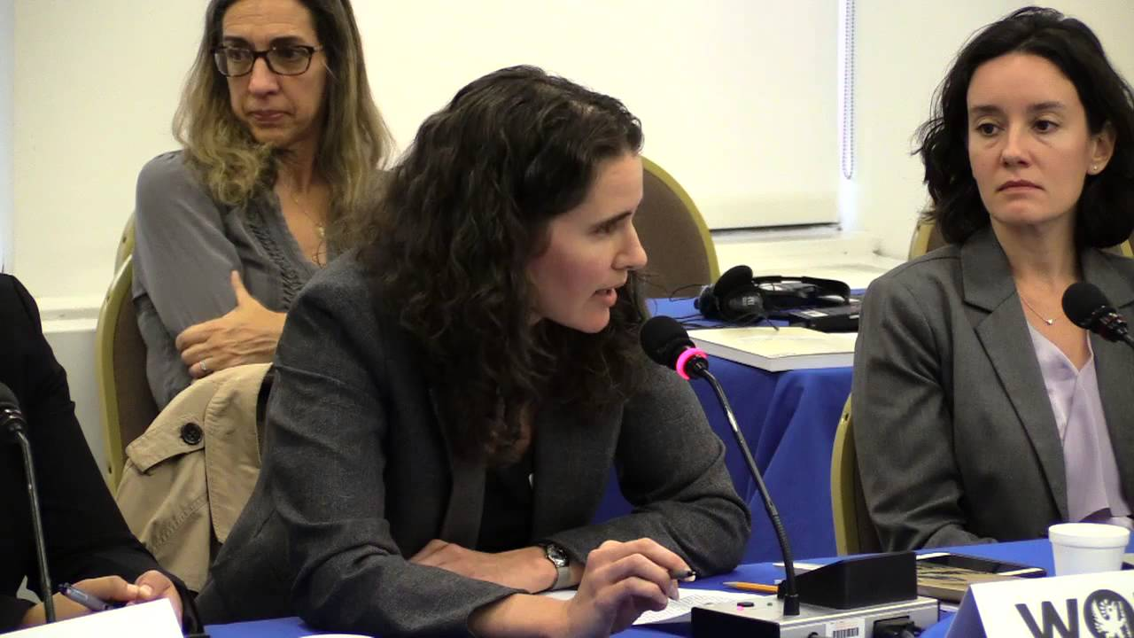 Derechos humanos e interceptaci�n de personas elegibles para la protecci�n internacional