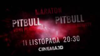 Nonton Maraton filmów Pitbull Film Subtitle Indonesia Streaming Movie Download
