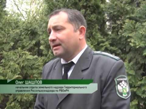 Об уничтожении лесополос в Ростовской области